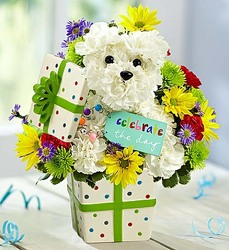 Party Pooch-blm142109 from Krupp Florist, your local Belleville flower shop