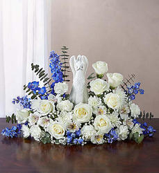 Serenity Angel Arrg Blue & White-blm148024