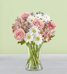 Mom's Special-blm148120 from Krupp Florist, your local Belleville flower shop