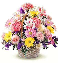 Basket of Cheer from Krupp Florist, your local Belleville flower shop