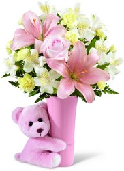 The FTD Baby Girl Big Hug Bouquet from Krupp Florist, your local Belleville flower shop