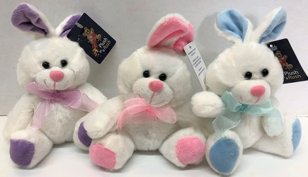 Pastel bunnies for Easter or New Baby from Krupp Florist, your local Belleville flower shop