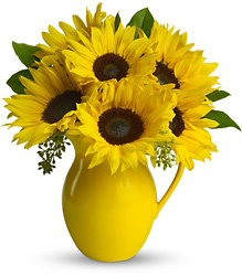 Teleflora's Sunny Day Pitcher of Sunflowers from Krupp Florist, your local Belleville flower shop