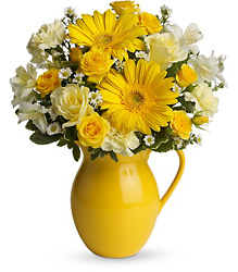 Teleflora's Sunny Day Pitcher of Cheer from Krupp Florist, your local Belleville flower shop