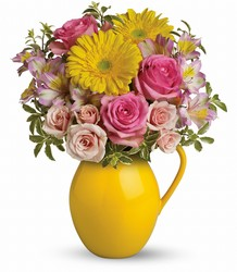 Teleflora Sunny Day Pitcher Of Charm from Krupp Florist, your local Belleville flower shop
