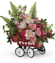 Teleflora's Welcome Beautiful Bouquet from Krupp Florist, your local Belleville flower shop