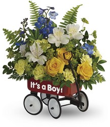 Teleflora's Sweet Little Wagon Bouquet from Krupp Florist, your local Belleville flower shop