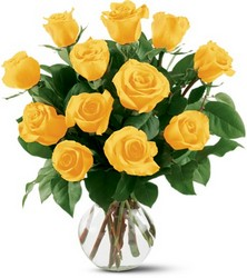 Yellow Roses from Krupp Florist, your local Belleville flower shop