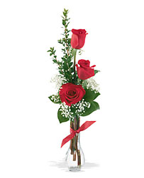3 Red Roses from Krupp Florist, your local Belleville flower shop