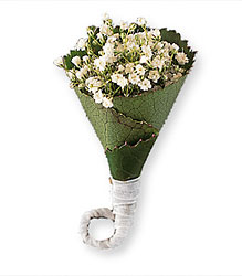 Rolled Gypsophila Boutonniere from Krupp Florist, your local Belleville flower shop