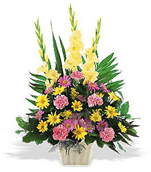 Warm Thoughts Arrangement from Krupp Florist, your local Belleville flower shop