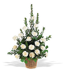 White Simplicity Basket from Krupp Florist, your local Belleville flower shop