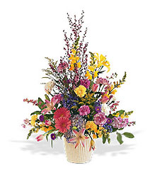 Spring Hope Arrangement from Krupp Florist, your local Belleville flower shop