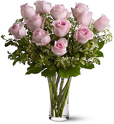 Pink Roses from Krupp Florist, your local Belleville flower shop